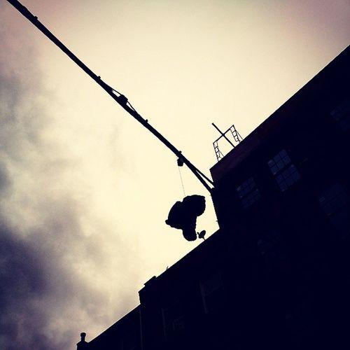 Deadteddybear Deathbystring Brooklyn NYC
