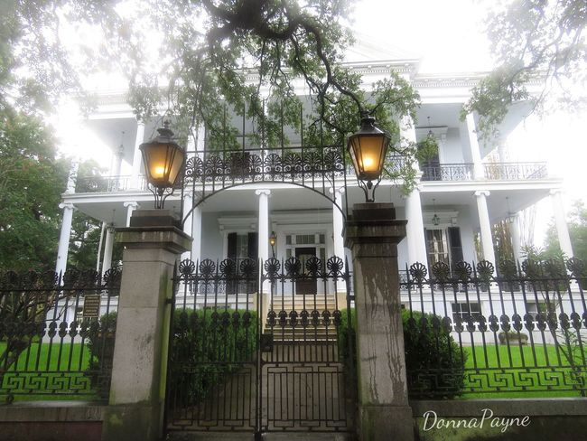 There Is A House In New Orleans. They Call The Rising Sun. American Horror Story Tree Plant Architecture Built Structure Street Light Illuminated Building Exterior No People Nature Low Angle View Fence Street Outdoors Boundary Sky Security Barrier Building