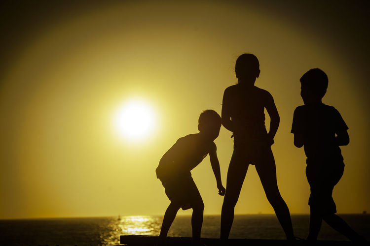 Rear View Of Silhouette Siblings In Front Of Sea At Sunset