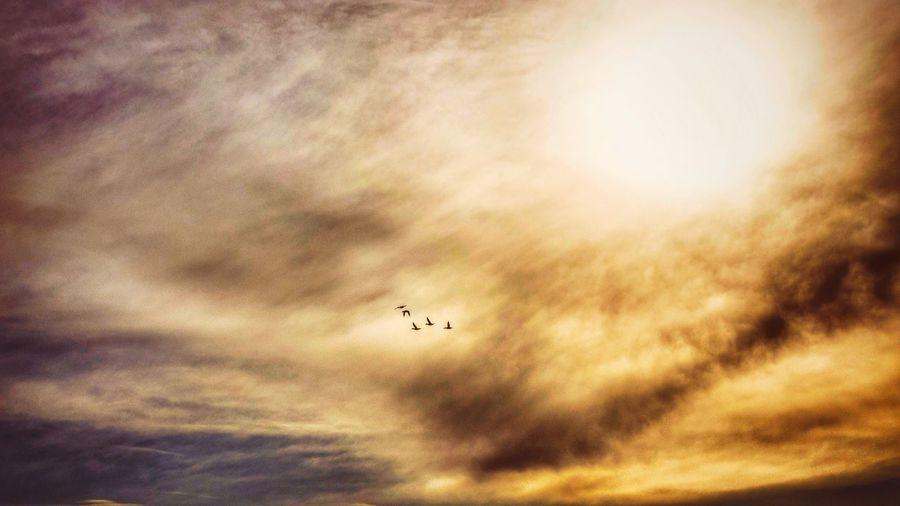 Sky Cloud - Sky Sunset Outdoors Nature Day