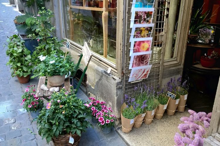 The Shop Around The Corner Flowerlovers Florista Flowers,Plants & Garden Florist Florals Shop Flowers Floral Flowerporn Floristry Flower Collection Flower Shop Market Stall Street Shopping Time Shopping Street Shops Building Exterior Zürich Switzerland Flores Floristics Floristas Flowershop