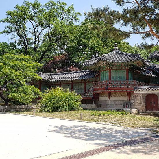 Joseon Dynasty Changdeokgung Palace Tripwithsonmay2017 Tripwithson2017Seoul Architecture Architecture Palace Architecture Korean Architecture Seoul Southkorea