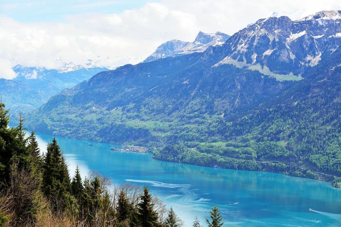 View from Harder Kulm, Interlaken, Switzerland. Mountains and a lake. Alpine Alps Beauty In Nature Day Harder Kulm Harderkulm Hiking Interlaken Lake Landscape Mountain Mountain Range Nature No People Outdoors Scenics Sky Swiss Swiss Alps Swiss Mountains Switzerland Switzerland Alps Travel Destinations Tree Water