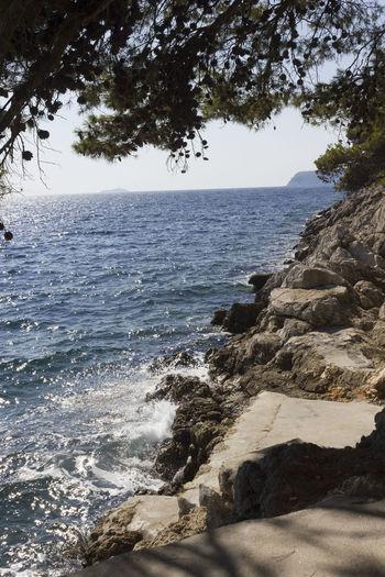 Lapad Dubrovnik Outdoors Sea Seascape Croatia Adriatic Sea Croatia ♡ Nobody Summer Cliff Cliffside Water Sky Beauty In Nature Tree Nature Land Beach Scenics - Nature No People Horizon Horizon Over Water Tranquility Plant Motion Day Rock Sunlight