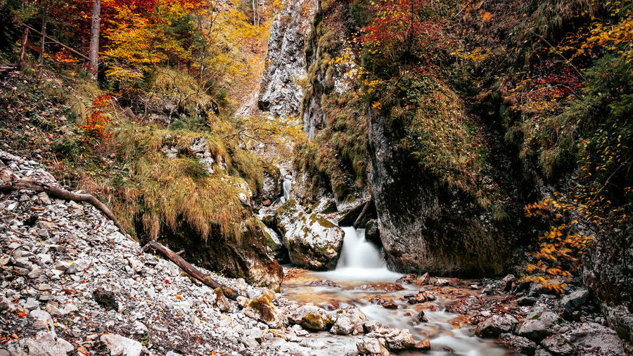 Rocky river bed, stream, autumn colors.