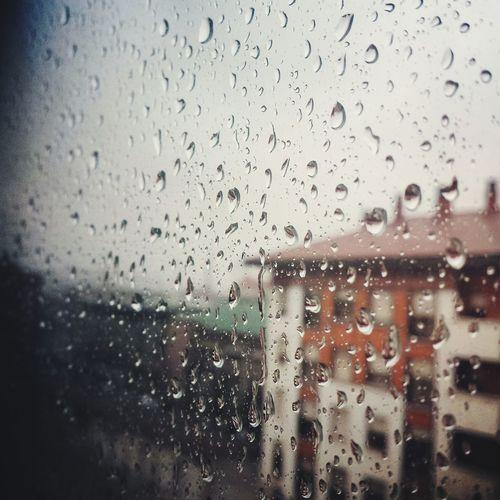 Erandio Quebienseestaencasa Tarde De Lluvia Peli Y Manta Euskadi Tropical Rainy Day