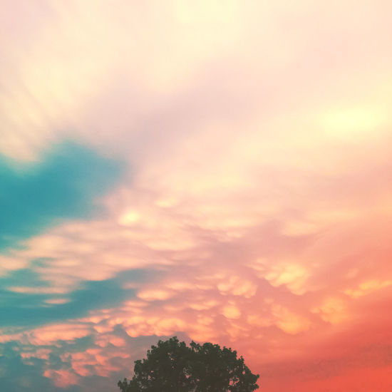 Mammatus Clouds Nature Outdoors Pastel Pastel Colors Pastels Sky Top View Tree Weather