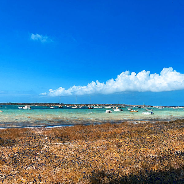 Beach Beauty In Nature Blue Cloud - Sky Day Horizon Horizon Over Water Idyllic Land Nature Nautical Vessel No People Outdoors Scenics - Nature Sea Sky Tranquil Scene Tranquility Travel Turquoise Colored Water