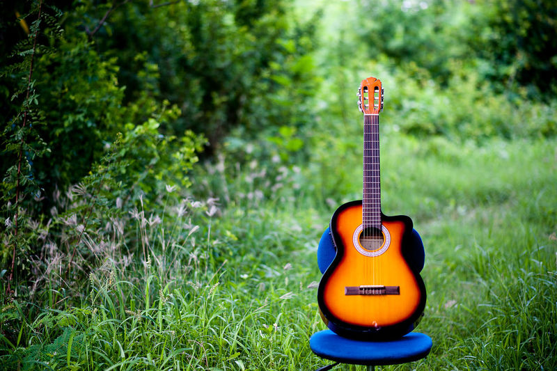 Absence Acoustic Guitar Arts Culture And Entertainment Day Electric Guitar Focus On Foreground Grass Green Color Guitar Music Musical Equipment Musical Instrument Musical Instrument String Nature No People Outdoors Plant Single Object String String Instrument Wood - Material