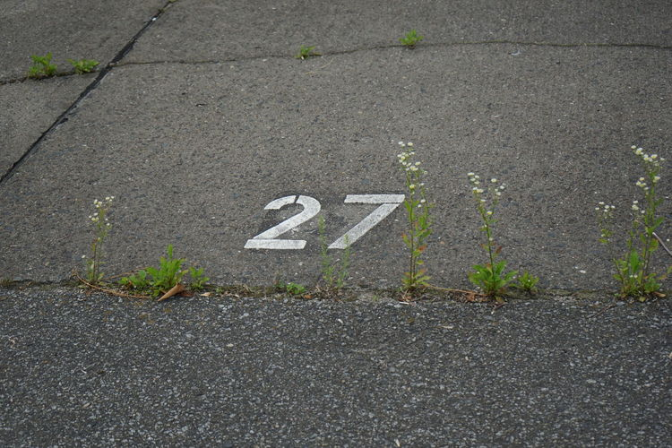 Asphalt Concrete Number 27 27 Asphalt City Close-up Communication Day Direction Guidance High Angle View Nature No People Number Outdoors Plant Road Sign Street Symbol Text Transportation Twentyseven  Western Script