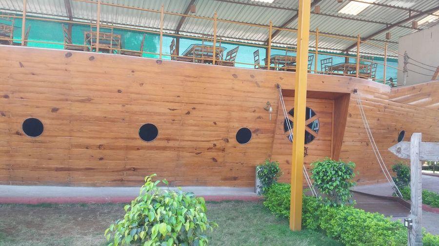 Plant Growth Flower No People Nature Indoors  Greenhouse Day Architecture Closed Door Double Door Wood Door Wooden Gate Door Handle Entry Gate Architecture Indoors