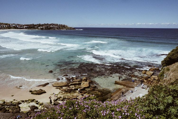Bondi Beach Sea Horizon Over Water Water Beach Beauty In Nature High Angle View Scenics Sky Nature Day Tranquility Outdoors Building Exterior Architecture Built Structure No People Tranquil Scene Tree Bondi Beach Australia Sydney, Australia EyeEmBestPics Eye4photography  EyeEm Best Shots EyeemTeam
