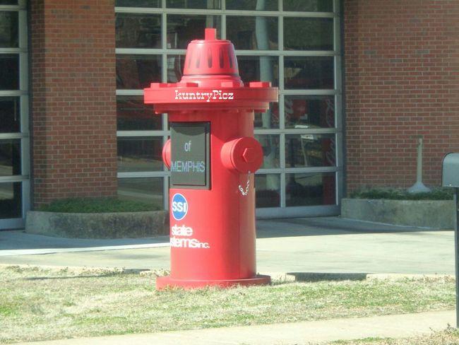 Firehydrant BIG Taking Photos Outdoor Photography Firehouse Drivingshot Streetphotography Memphis,tn Mycity