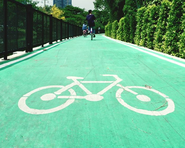 Outdoors Day Green Color Real People Men Bike Lane Bike Lane Sign Bicycles Park Outdoor Activity Park Exercises  Sign Symbol People