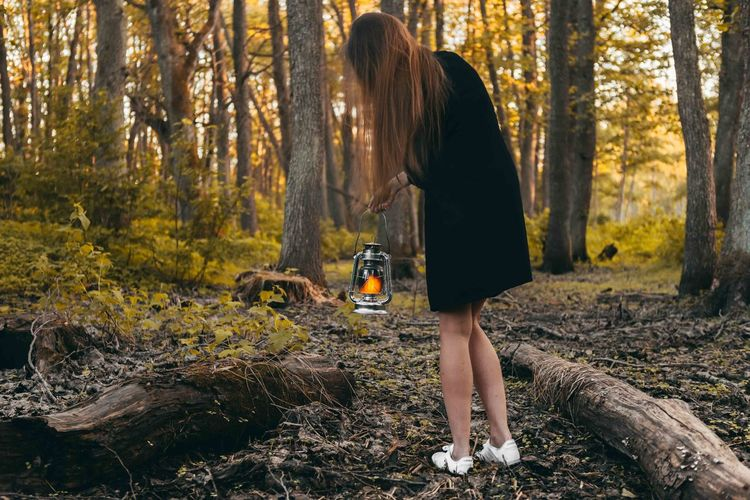 Woman with oil lamp is looking for something at the forest. Evening, Sunset Adult Autumn Change Day Forest Full Length Hairstyle Land Leisure Activity Lifestyles Nature One Person Outdoors Plant Real People Standing Tree Tree Trunk Women WoodLand Young Adult