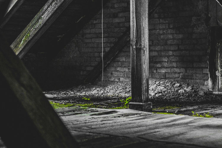 the attic Attic Wood Plant Blackandwhite Black And White Green Green Color Wood - Material Darkness darkness and light Stone Stone Material Green Plant Moos Lostplaces Lost Places Old Old Attic Beamad Roof Beauty In Nature Beautiful Power In Nature Powerful Powerful Nature Weedy Photography Photo Photographer Mystery EyeEmNewHere The Photojournalist - 2018 EyeEm Awards The Creative - 2018 EyeEm Awards The Great Outdoors - 2018 EyeEm Awards Creative Space HUAWEI Photo Award: After Dark A New Beginning Capture Tomorrow