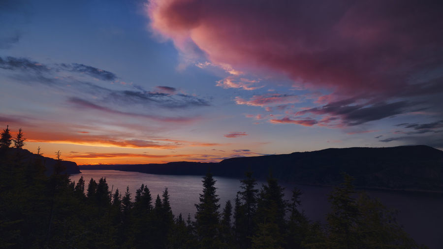 Pinky Cloud Quebec Tree Beauty In Nature Clouds Landscape Mountain Nature No People Outdoors River Scenery Scenics Silhouette Sky Sunset Tranquility Tree