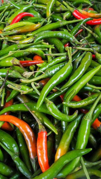 Abundance Backgrounds Chilli Close-up Day Food Food And Drink Freshness Full Frame Green Chili Pepper Green Color Healthy Eating Nature No People Outdoors Spice Vegetable