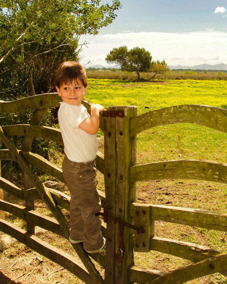 Portrait of boy climbing on fence