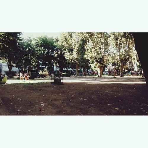 La plaza más linda de todas 🌸🌼🌳🌺 First Eyeem Photo