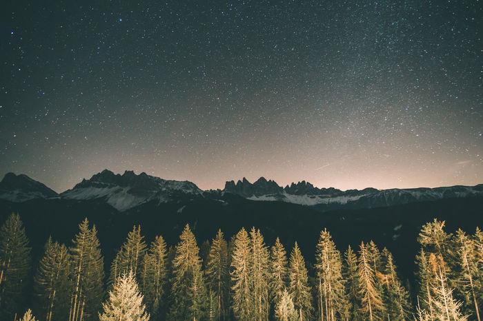 Stars at night in South Tyrol Alps Alto Adige Beauty In Nature Calm Dreamy Italy Light Light At Night Lit Milky Way Mountains Night Night Lights Night Photography Night Sky Peace Pine Trees Sky South Tyrol Sparkling Star Stars Südtirol Tranquility Tree