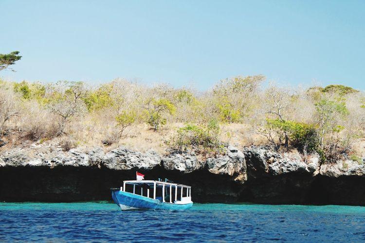 EyeEm Selects Tree Water Nautical Vessel Clear Sky Blue Sea Sky