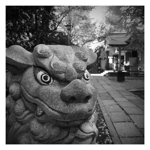 Guardian lion-dog at shrine. Walking Around Streetphotography IPhoneography Blackandwhite Shades Of Grey