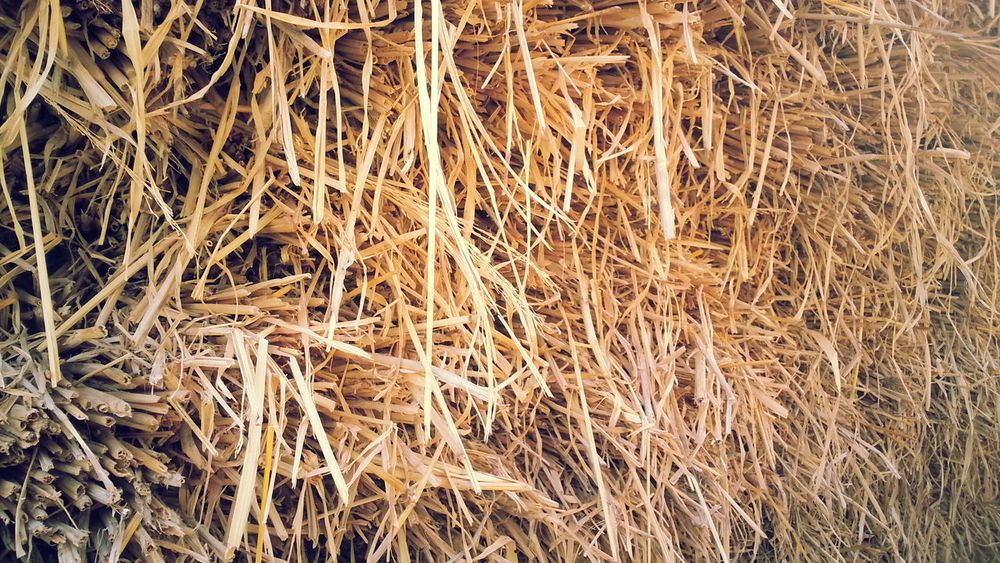 Drygrass Straws Grass Haystack Haystaks Haystacks
