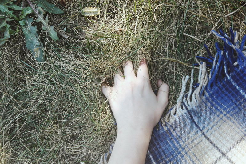 Cropped hand on grassy field