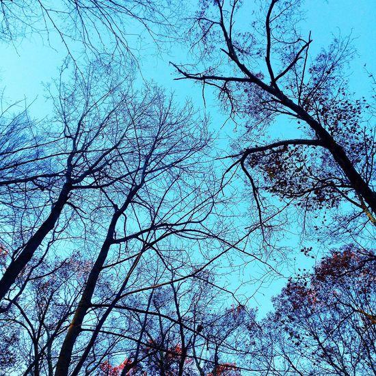 Sky running Trail Running