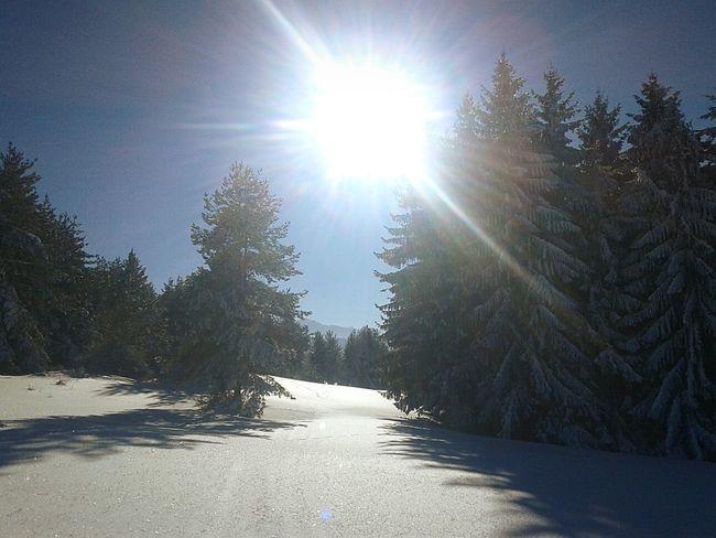 Sunlight Sun Nature Sky No People Snow Day Beauty In Nature Самоков България Samokov Bulgaria Winter