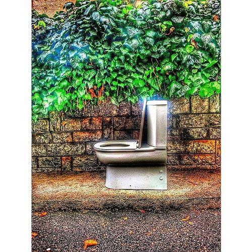 Irronical Street Street_art Colour colour flora clozet street_art_is comics look humor world marcel_duschamp