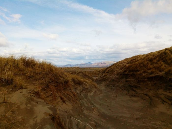 The sand dunes look like a dragon has just left its nest, and has flied towards the hills in the background Borth, Wales Borth Beach Wales Dune Sand Sand Grass Beach Sand Dune Sand Sea Sky Landscape Cloud - Sky Coast Calm Desert