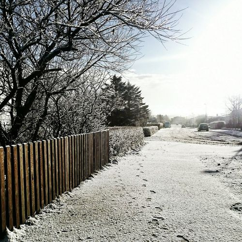 Snow ❄ Wintertime ⛄ Beautiful Cold Day Frosty Morning Winter Wonderland Mobile_photographer Snowing