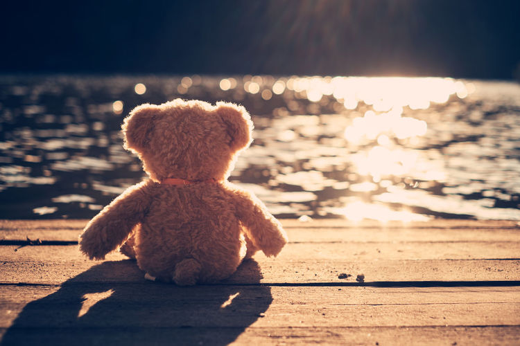 Teddy bear on pier over lake during sunny day