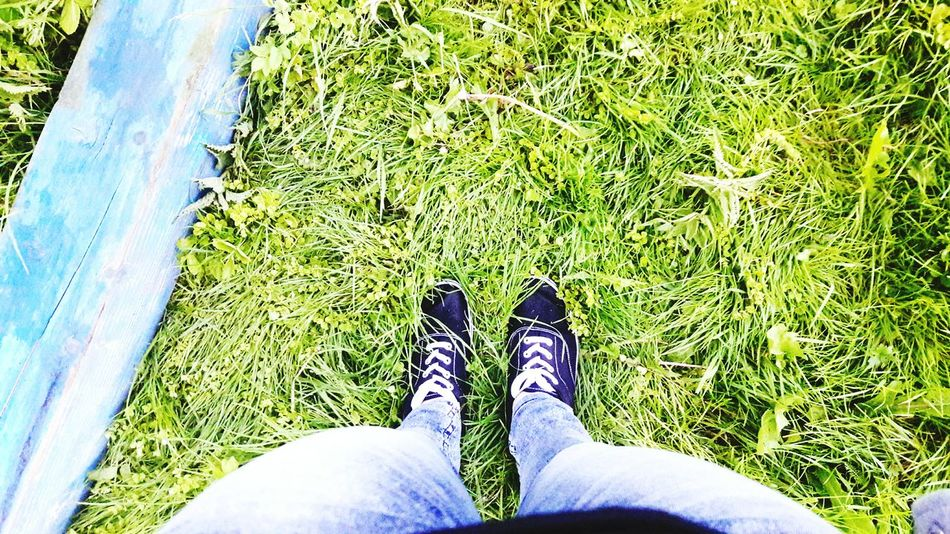 ножки Summer лето Legs