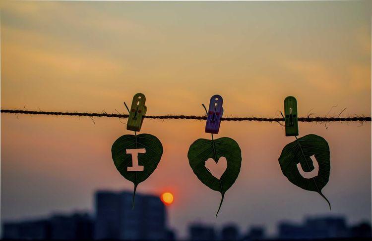Abstract Nikon Nikon D5100  Kolkata India Love ♥