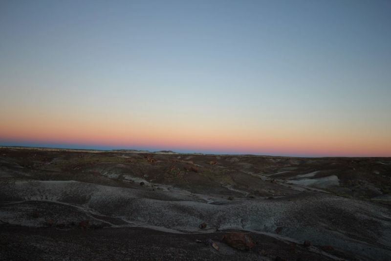 Beautiful sunset horizon in the petrified forest National Park Basalt Petrified Forest Horizon Dusk Sky Landscape Scenics - Nature Environment Tranquility Tranquil Scene Beauty In Nature Copy Space Clear Sky Sunset Nature Non-urban Scene Land No People Idyllic Remote Horizon Over Land Outdoors Field