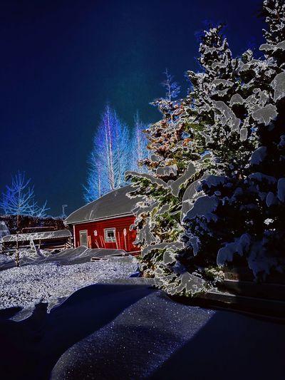 Night Celebration Sky Outdoors Winter Star - Space No People Snow Illuminated Nature