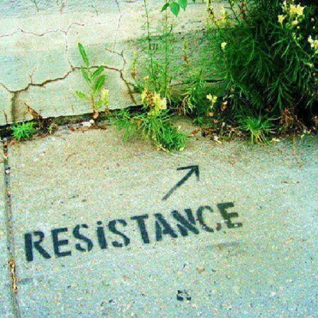 Resistance  Revolution Rebelle Nature