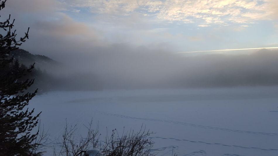 Beautifulbc Lake Nature Sky Foggy Day No People Nofilterneeded Wintermagic Wintertime