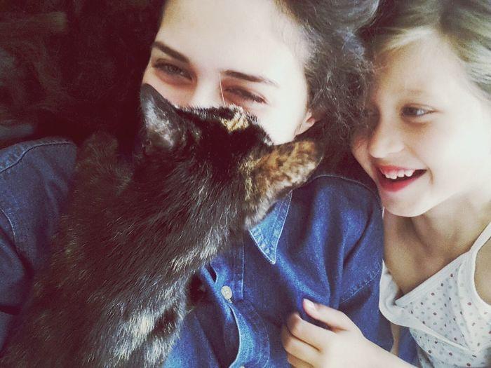 Веселимся ;D Happy Cat Sisters Pretty