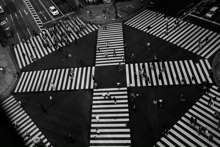それぞれの人生 City Life Overlook Tokyo,Japan Blackandwhite Intersection Scramble Crossing Leicacamera Ginza Tokyo Japan