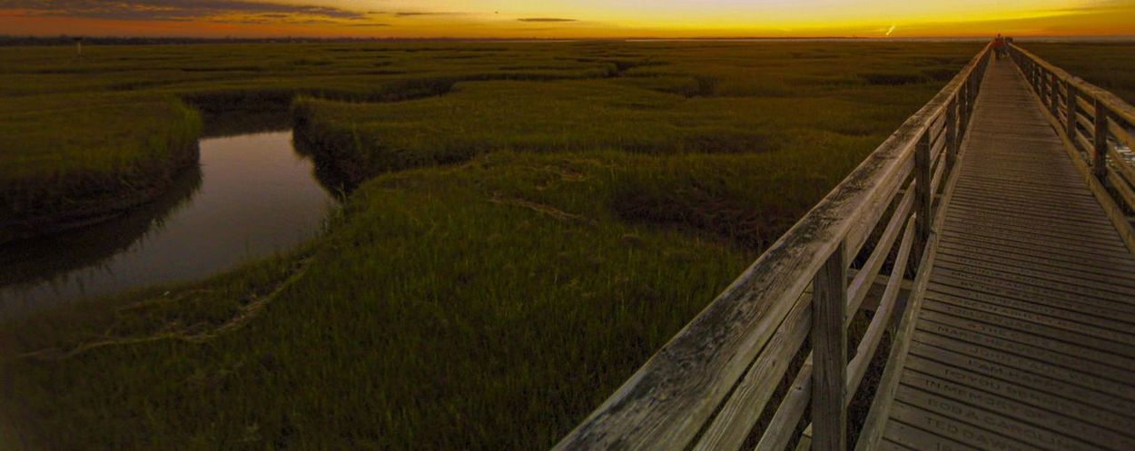High Angle View Landscape Seascape Beauty In Nature Nature Saltwater Marshes Diminishing Perspective Green Color Outdoors Sunset Tranquility Capecodlife EyeEm Nature Lover Cape Cod Remote Capecodimages Horizon Over Water Tranquil Scene Water Nature Perspectives On Nature Scenics Grays Beach