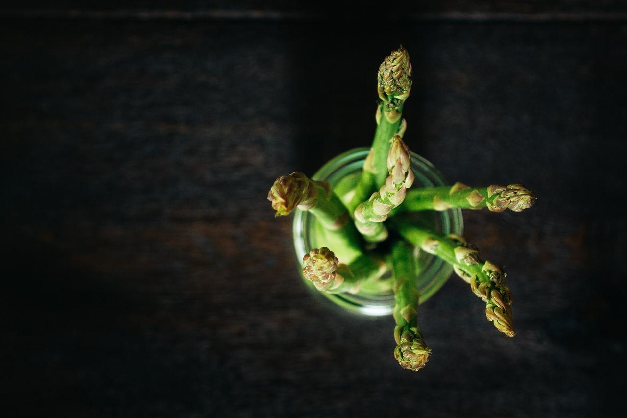 Botany, Bud, Close-Up, Directly Above, Flower