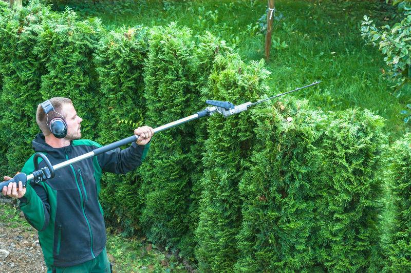 Man Cutting Bushes