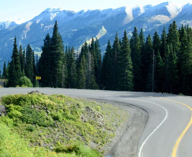 Curve on the high-altitude Million Dollar Highway in Colorado Winding Road Highway Driving Altitude Travel Mountain Tree Scenics Mountain Range Nature Beauty In Nature Tranquility Road No People Outdoors Day Curve Landscape Forest Sky