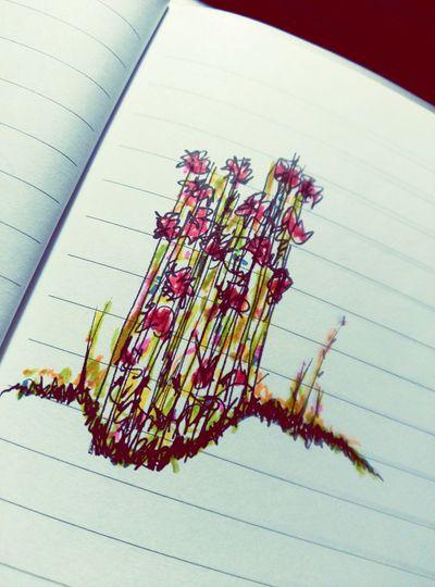 Dibuixos Dibuix Dibujo Dibujos :3 Drawing ✏ Drawingtime Flower Collection Flowers Flors Flores