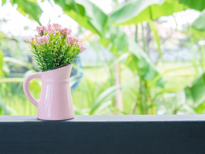 Flower Pot Green Pink Background Beauty In Nature Bouquet Close-up Fence Flower Freshness Nature Plant