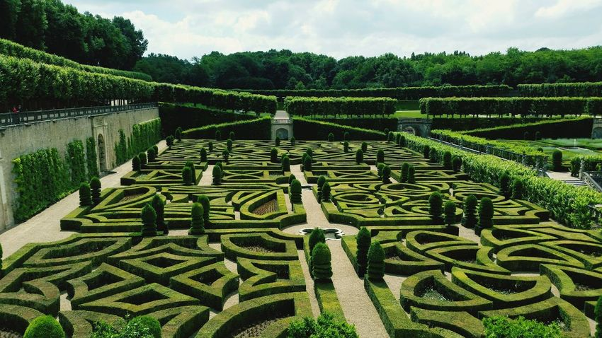Growth Green Color Agriculture Pattern No People Day Tree Outdoors Nature Sky Villandry Castle Chateau De Villandry Villandry Chateau Villandry Villandry Gardens Nature Architecture Vacations Travel Destinations